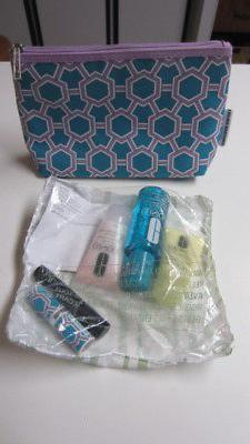 2017, Jonathan Adler Clinique Travel Kit / Set with Carry Ba